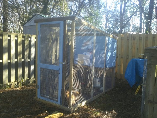 The Chickenhut in our old backyard.